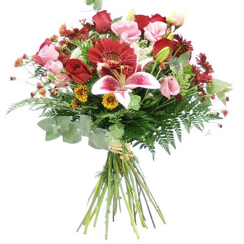 http://fleur.moy.su/_ph/1/2/160549651.jpg